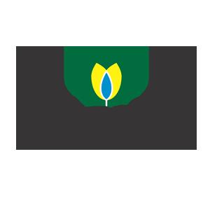 Solovita